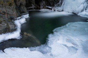 nile-creek-2