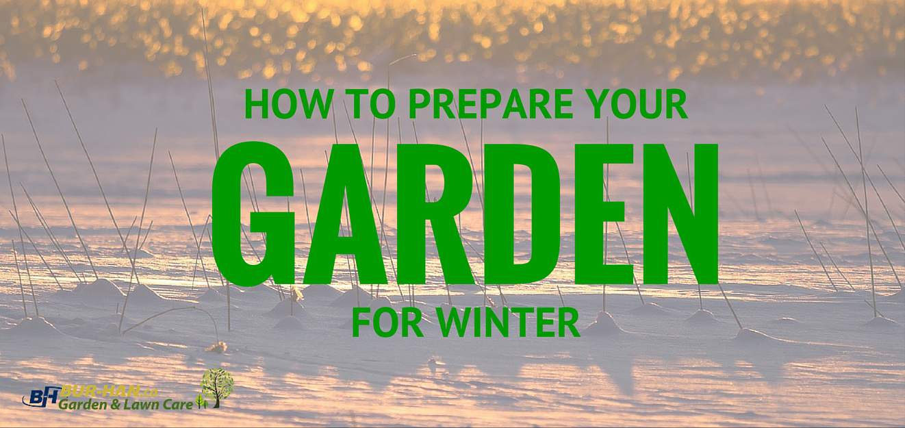 How To Prepare Your Garden For Winter Bur Han Blog