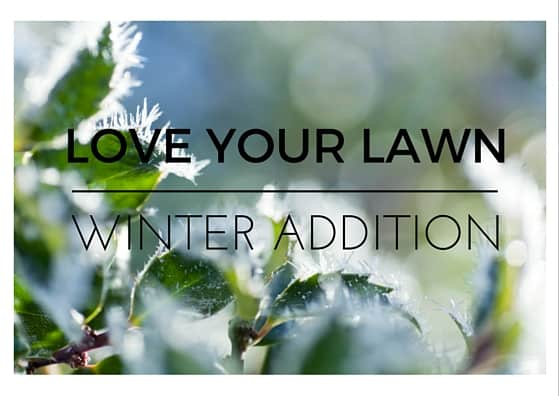Love your lawn tips to keep your winter lawn - Winter lawn care advice ...