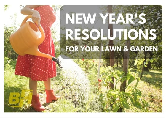 Lawn New Year's Resolutions BUR-HAN