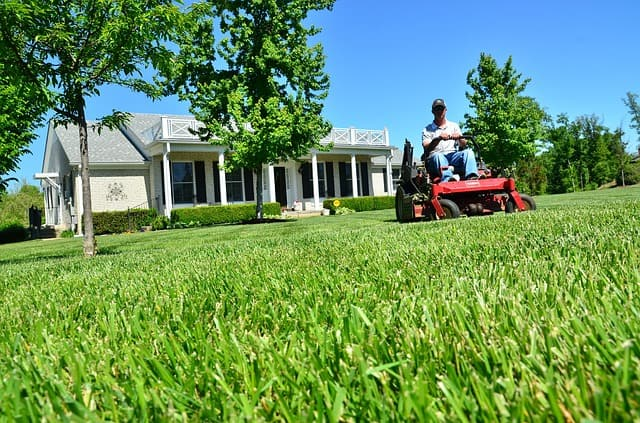 lawn care company mowing lawns
