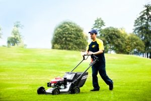Lawn Cutting in Vancouver