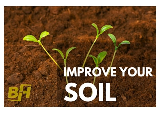 Improve your soil