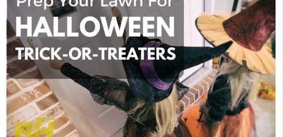 prepare lawn for halloween